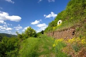 Aufstieg aus dem Tal kurz hinter Hatzenport