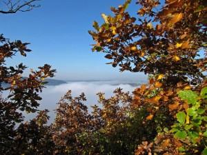 Herbststimmung über der Mosel - Wanderzeit