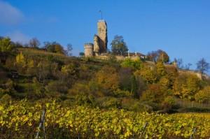 Ruine Wachtenburg bei Wachenheim