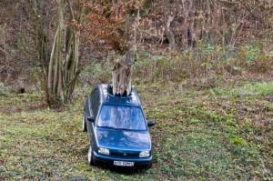 Parken auf Waldparkplätzen