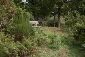 Naturschutzgebiet Geisert bei Demerath