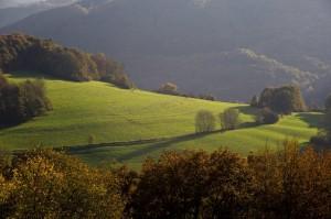 Schöner Westerwald