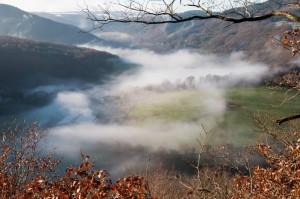 Nebel über dem Rurtal