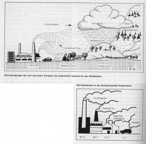 """Illustration zum Waldsterben in der """"Eifel"""", 1989. (Eifelverein - Hauptgeschäftsstelle und Eifelbibliothek)"""