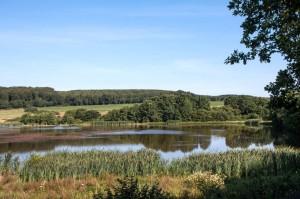 Naturschutzgebiet Sangweiher