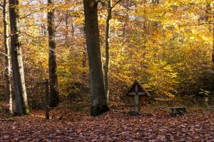 Das Schwarze Kreuz im Rheinbacher Stadtwald