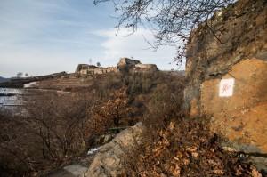 Blick auf die Ruine Saffenburg von Rotweinwanderweg