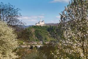 Blick auf die Marksburg bei Braubach