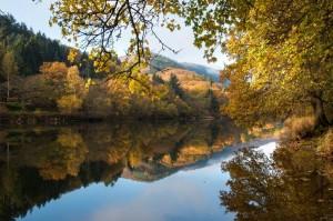Das Staubecken Heimbach