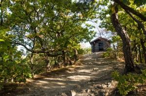 Die Schutzhütte auf dem Schrock