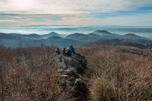 Siebengebirge: Sechs auf einen Streich