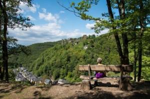 Blick auf Schloss Veldenz