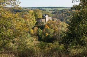 Blick auf Schloss Schöneck